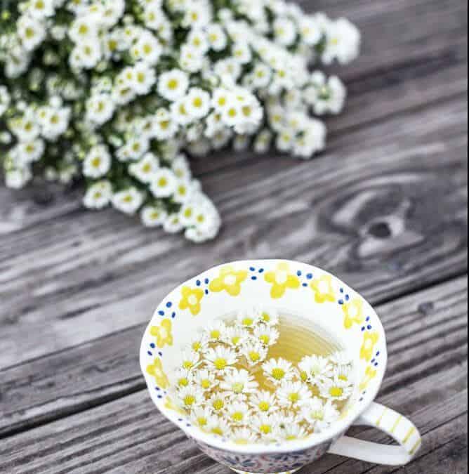 Chamomile Herbal Tea, 2 Awesome Recipes