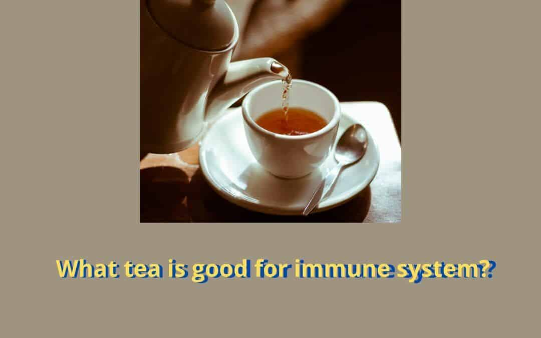 What tea is good for immune system? 4 bright teas